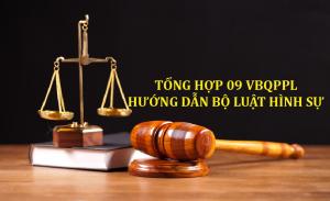 Tổng hợp 09 VBQPPL hướng dẫn thi hành Bộ luật Hình sự